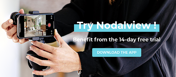 Try Nodalview